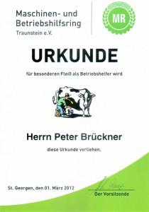 Urkunde Maschinen- und Betriebshilfsring März 2012